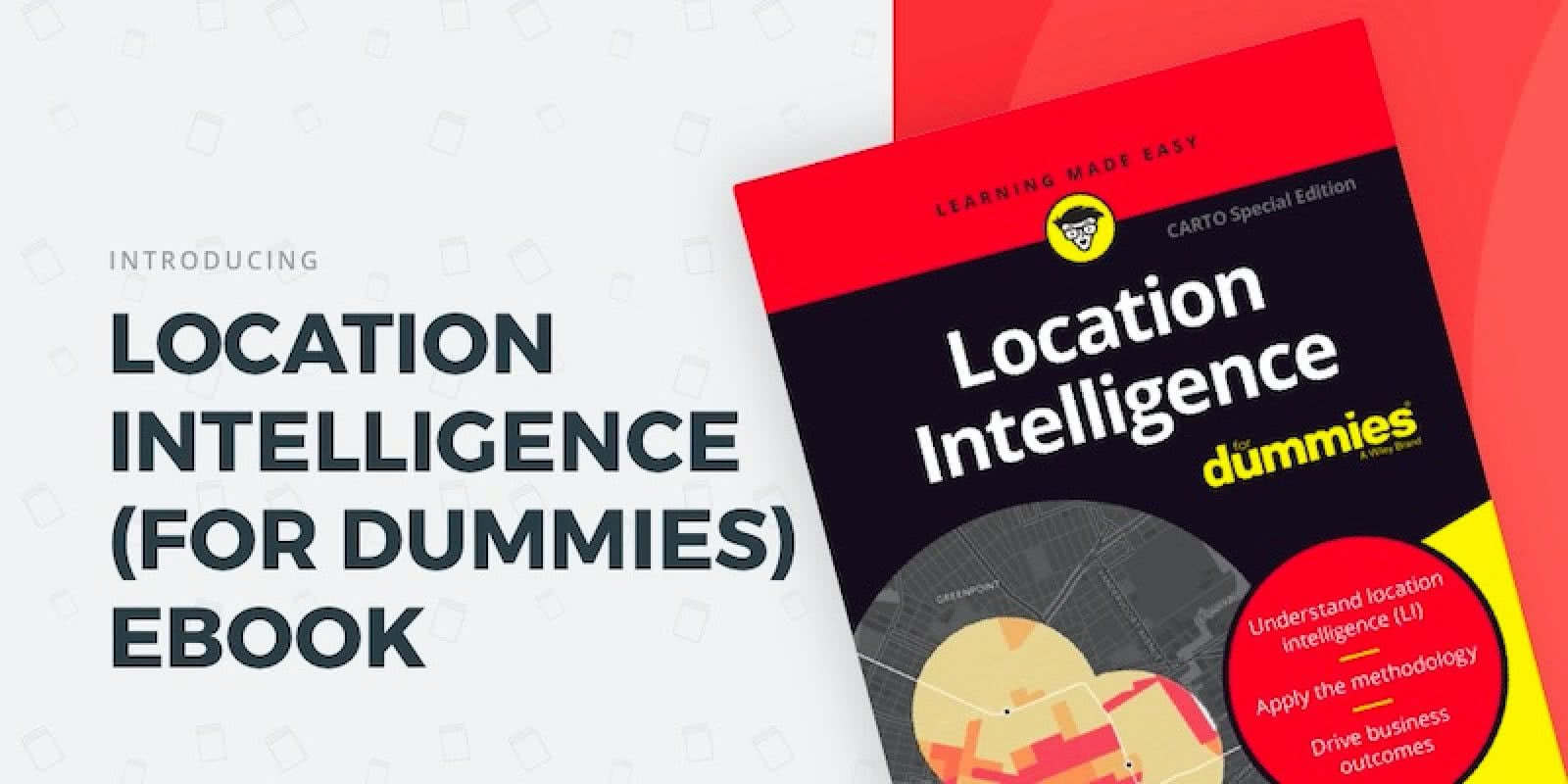 Location Intelligence for dummies.jpg